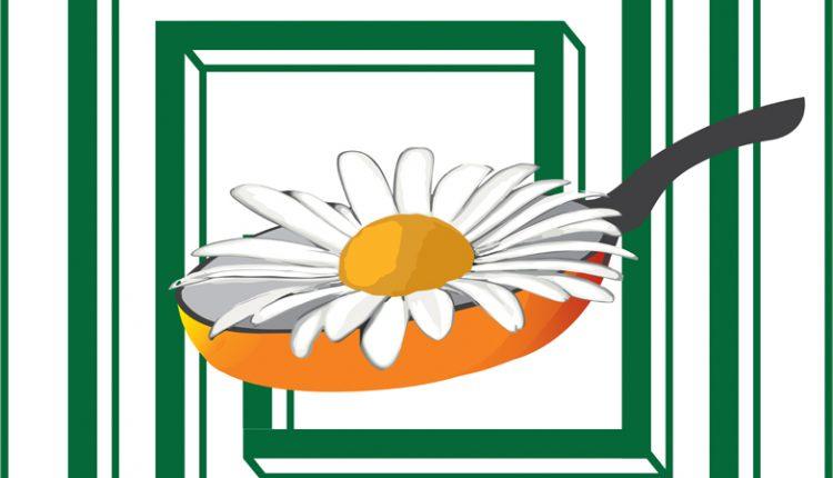 logo_KFKJ